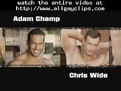 Adam Champ And Chris Wide Gay Porn Gays Gay Cumshots Sw