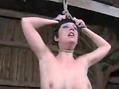 Maledom Bdsm Bondage Slave Torture