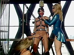Three sexy BDSM sluts in bondage scene