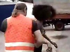 Ebony Hottie Fucked By Trucker mature mature porn granny old cumshots cumshot